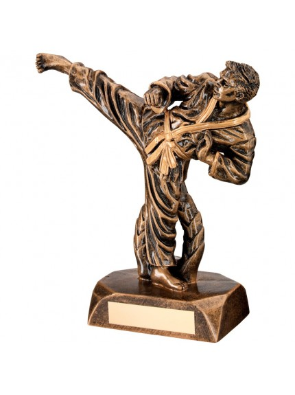Bronze And Gold Resin Karate Figure Trophy