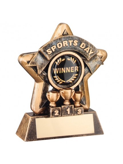 Brilliant Bronze and Gold Sports Day Mini Star Trophy