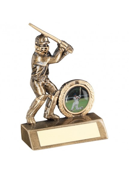 Bronze And Gold Mini Cricket Batsman Trophy