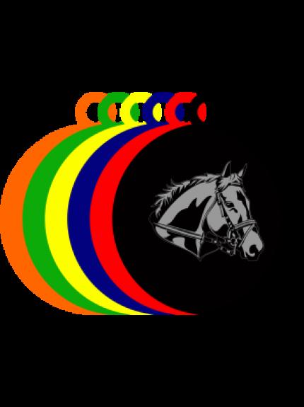 50mm Acrylic Equestrian Medal