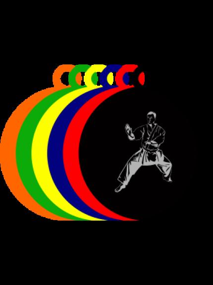 50mm Acrylic Martial Arts Medal