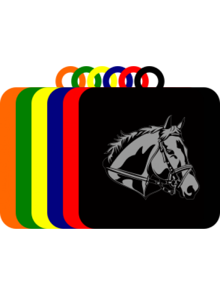 50mm Acrylic Equestrian Square Medal