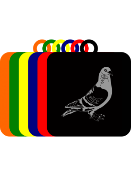 50mm Acrylic Pigeon Square Medal