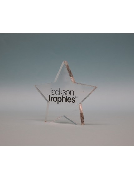 Freestanding Acrylic Star Award