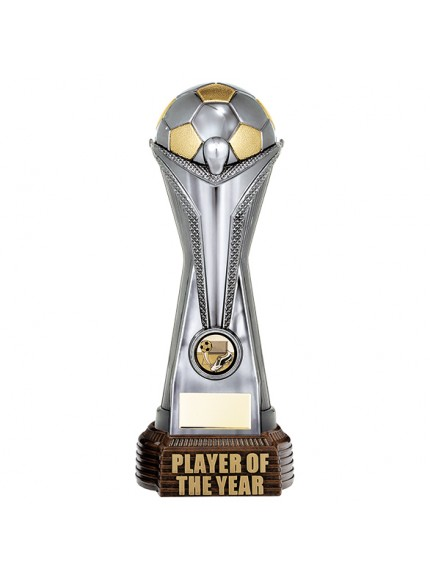 World Football Player Of The Year Gunmetal & Gold 260mm