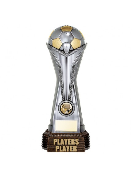 World Football Players Player Gunmetal & Gold 260mm
