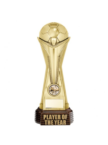 World Football Player Of The Year Gold 260mm