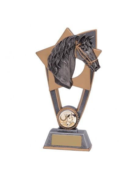 Star Blast Equestrian Horse Award