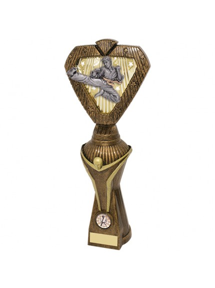 Hero Victory Karate Heavyweight Award