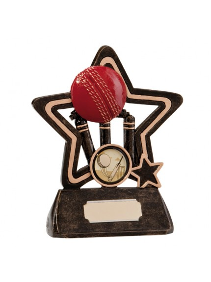 Little Star Cricket Plaque