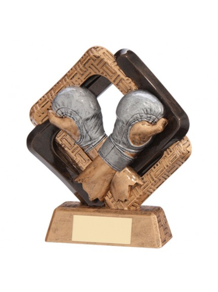 Sporting Unity MMA Award - Available in 2 Sizes