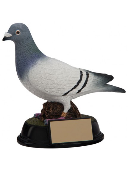 The Elite Pigeon Racing Award 160mm