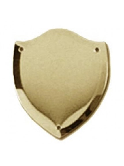 38mm Bevel Edged Gold Side Shield
