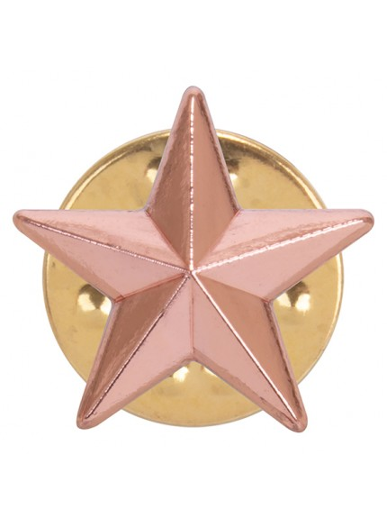 3D Bronze Star Pin Badge - 3 Colours