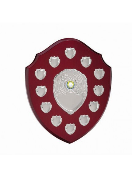 The Frontier Annual Shield Award 290mm