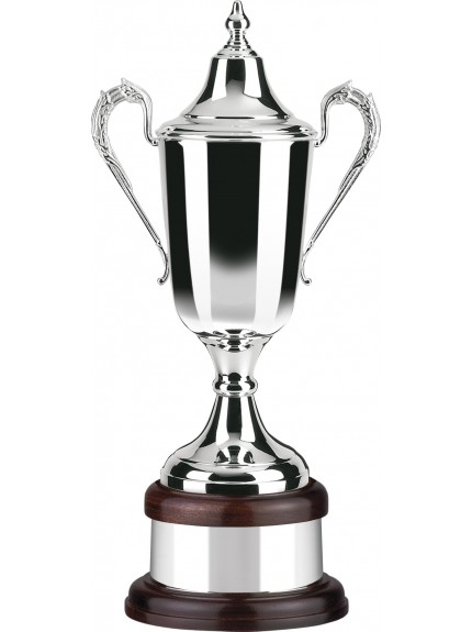 Plain Bodied Silver Plated Supreme Award