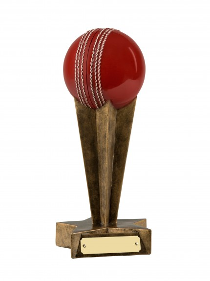 MB Cricket Award