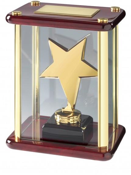 Star Award - 2 Colours