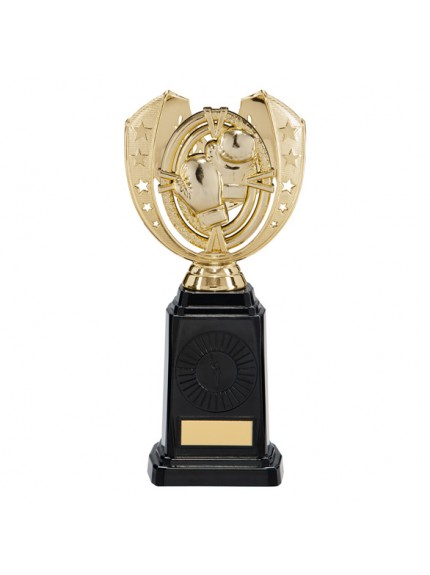 Maverick Boxing Frontier Award Gold 250mm