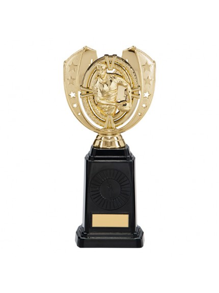 Maverick Rugby Frontier Award Gold 250mm