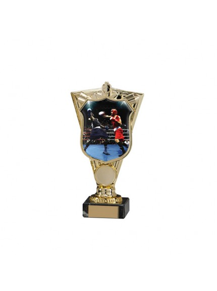 Titans Boxing Trophy