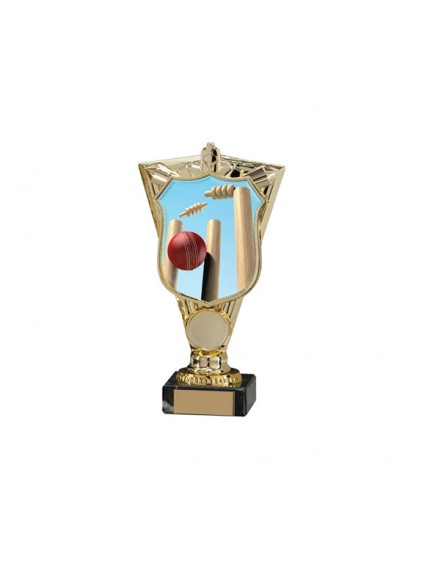 Titans Cricket Trophy