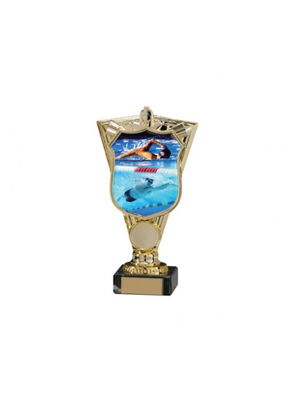 Titans Swimming Trophy