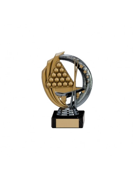 Renegade Martial Arts Legend Award Gunmetal & Gold - Available in 5 Sizes