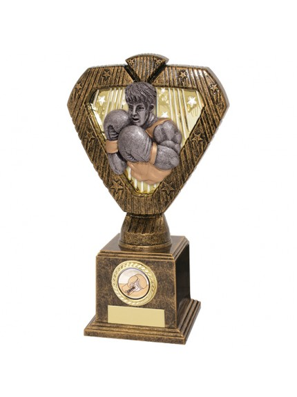 Hero Legend Boxing Award 165mm