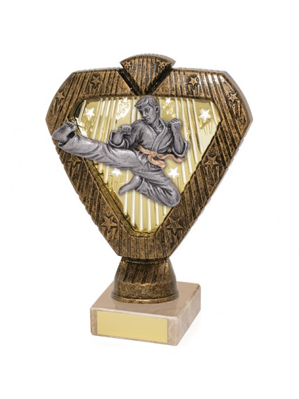 Hero Legend Martial Arts Award