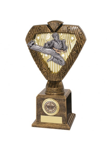 Hero Legend Martial Arts Award