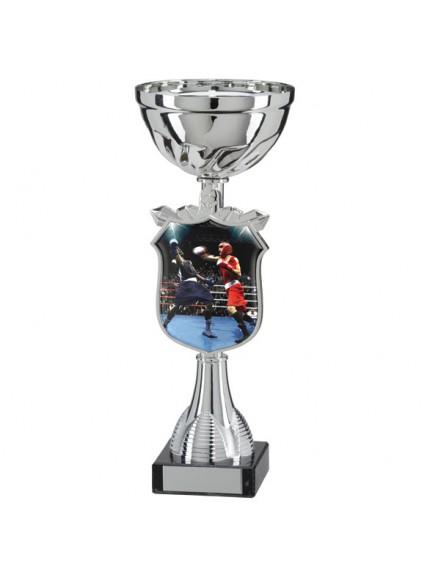 Titans Boxing Cup