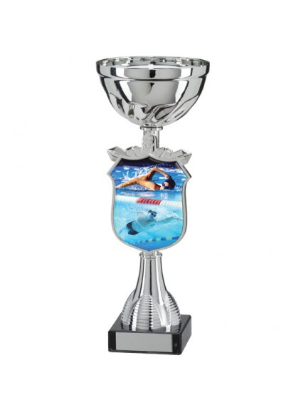 Titans Swimming Cup