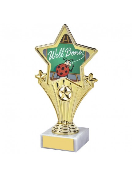 17cm Fun Customisable Star Awards