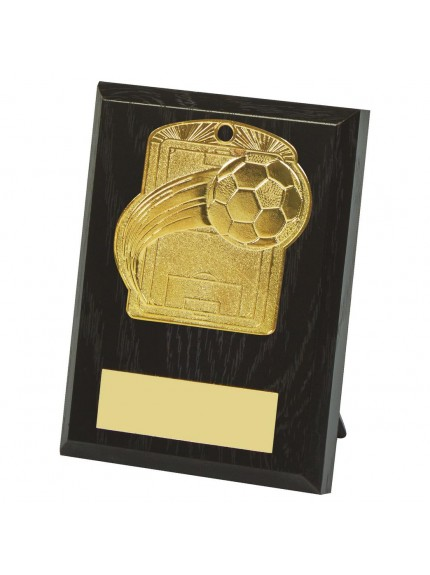 10cm Football Pitch Medal Plaque - Available in Gold and Silver