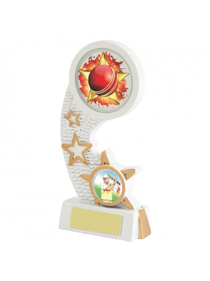 White Resin Cricket Award - Available in 4 sizes
