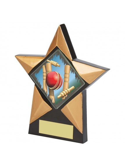 Black Resin Star Cricket Award - Available in 2 sizes