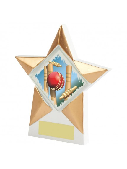 White Resin Star Cricket Award - Available in 2 sizes