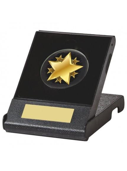 5cm Gold Star Case Award