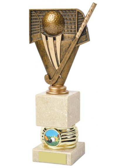 Antique Gold Hockey Awards mounted on Cream Marble