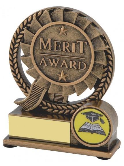 10cm Gold Resin Schools Merit Award