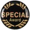 SPECIAL AWARD - 1in