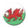 Wales Dragon 25mm