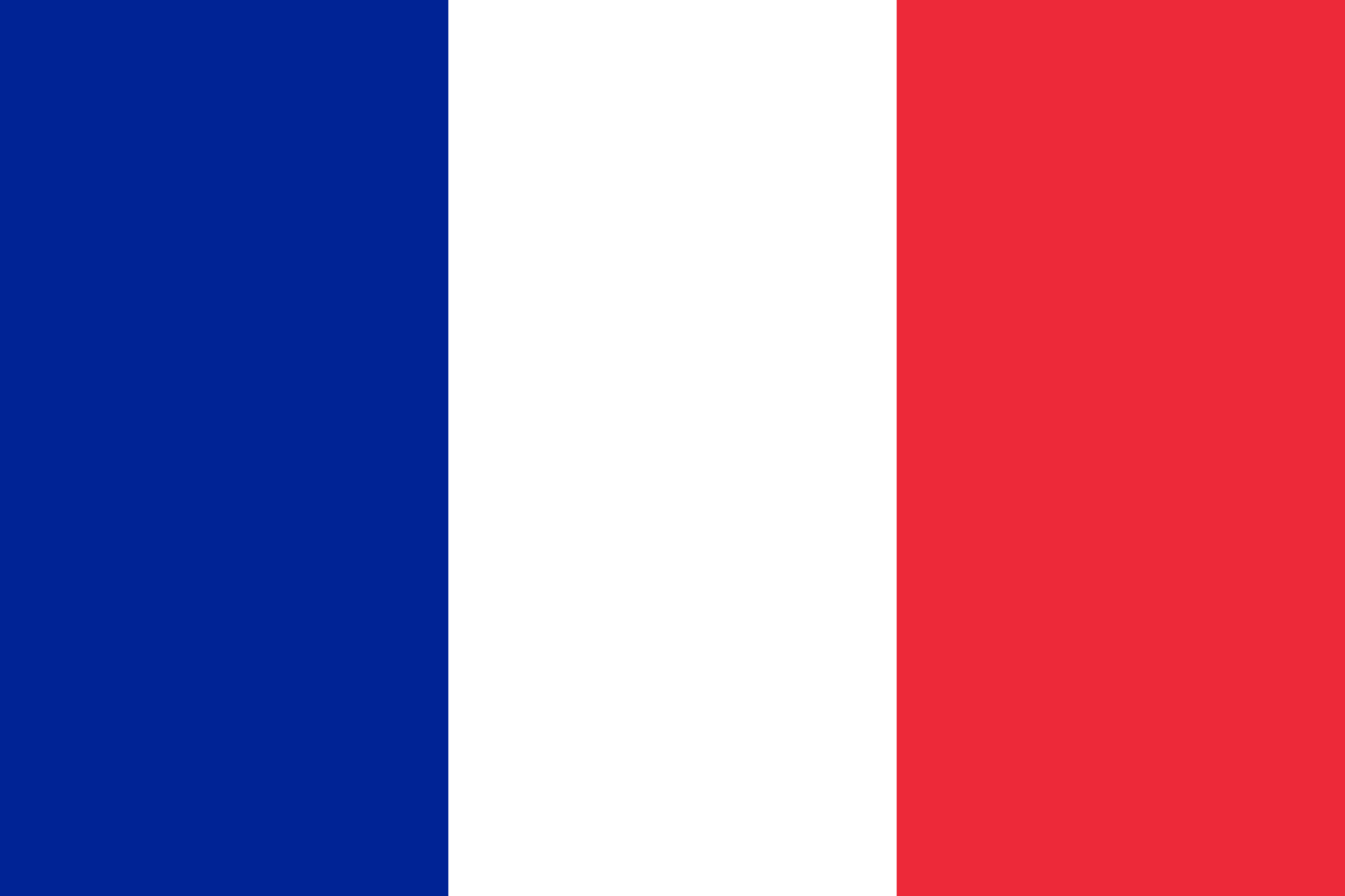 The French National Flag