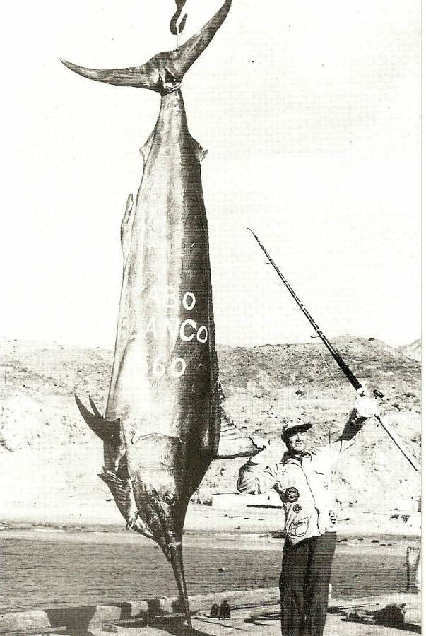 The biggest fish ever caught
